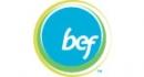 BEF logo primary