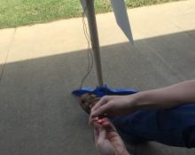 Denton TX teacher wind circuit