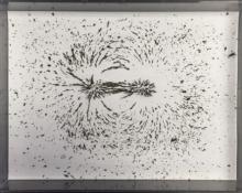 Magnetic Field Filings